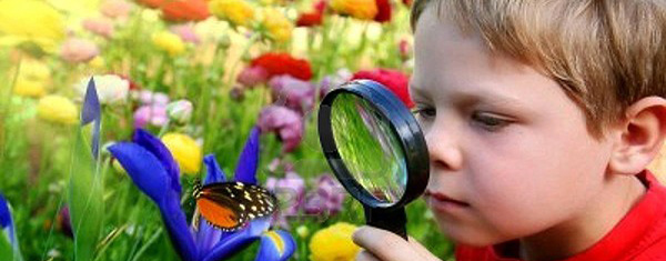 эколог-исследователь